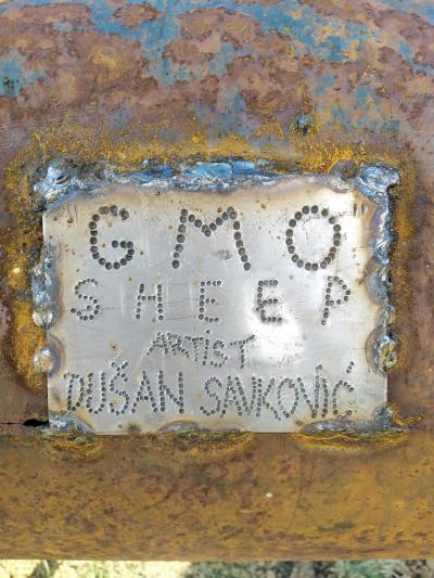 GMO OVCA, metal,2020